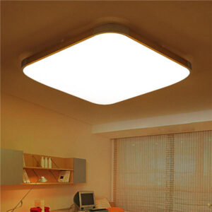 Interior Ceiling Lighting Installation