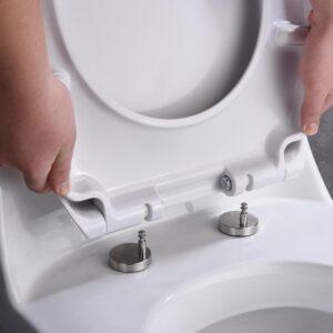 Toilet Seat Installation